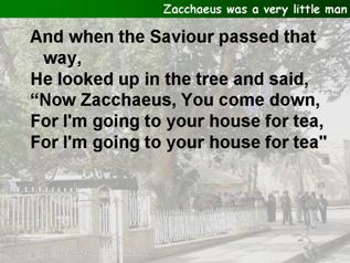 Zacchaeus was a very little man