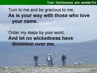 Your testimonies are wonderful (Psalm 119.129-136)