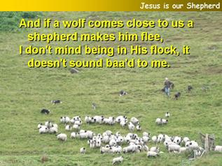 Jesus is our Shepherd