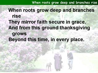 When roots grow deep and branches rise