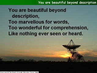 You are beautiful beyond description
