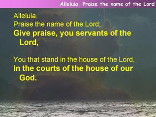Alleluia. Praise the name of the Lord (Psalm 135)