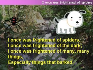 I once was frightened of spiders